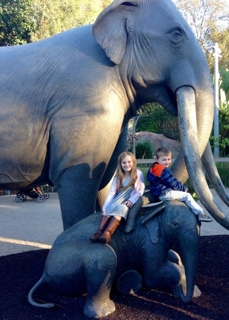 San Diego Zoo Elephants