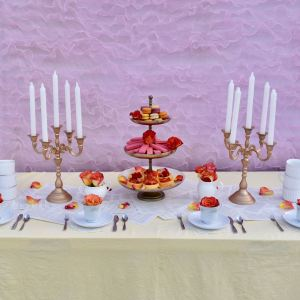Belle Beauty and the Beast Party