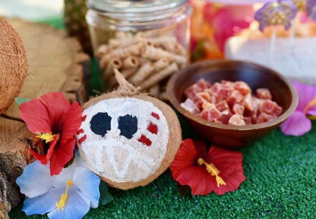 DIY kakamora coconuts for Moana birthday party