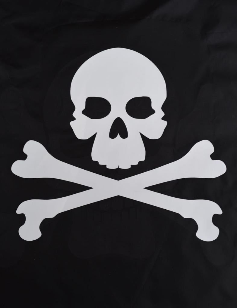 DIY pirate flag for Goonies Halloween party