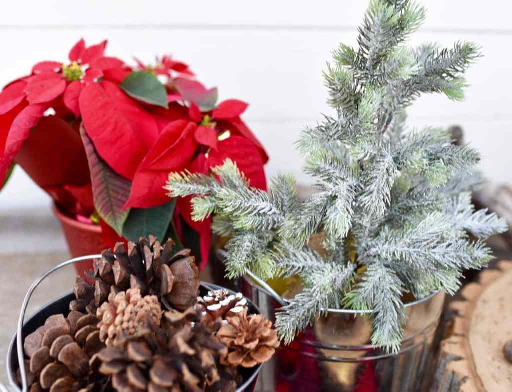 Christmas poinsettia, pinecone, and pine tree decorations at buffalo plaid party