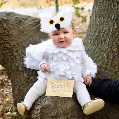 Hedwig Baby Owl Costume DIY {No-Sew} - Make Life Lovely