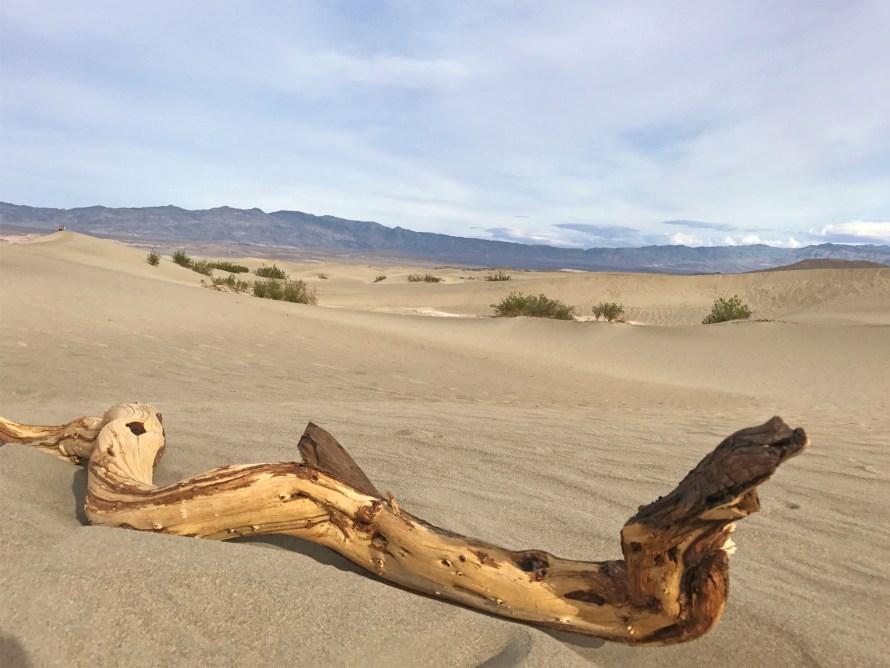 dunes-3