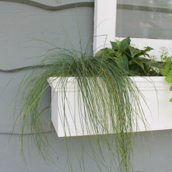 DIY Vintage Window Flower Box