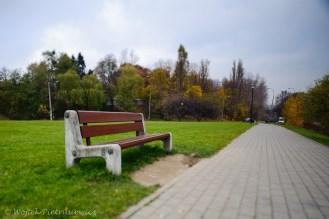 blogPW1_3881