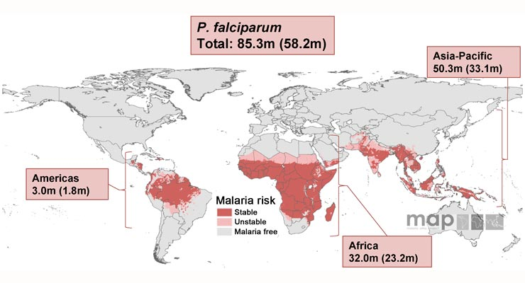Malaria in Pregnancy Is a Matter of Life and Death – for Mother and Child