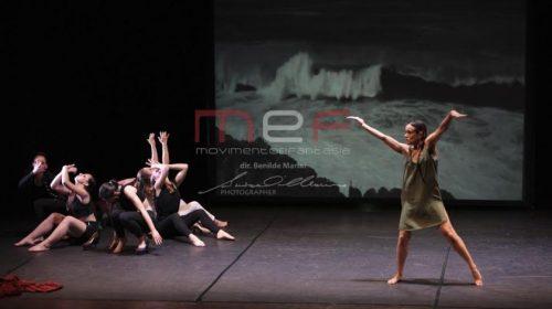 DANCE IMMERSION FESTIVAL