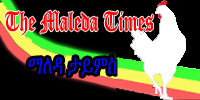 maleda footer