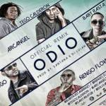 Letra: Baby Rasta y Gringo Ft. Nengo Flow, Tego Calderon Y Arcangel – Odio (Official Remix)