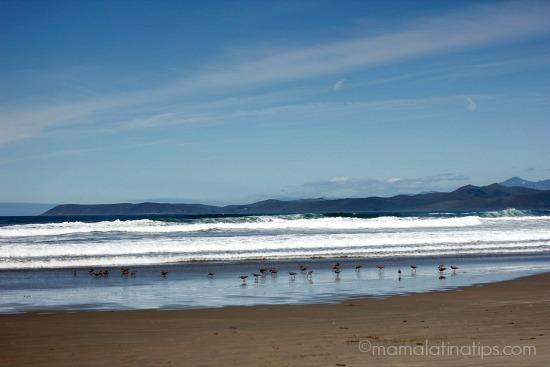 Ocean by mamalatinatips.com