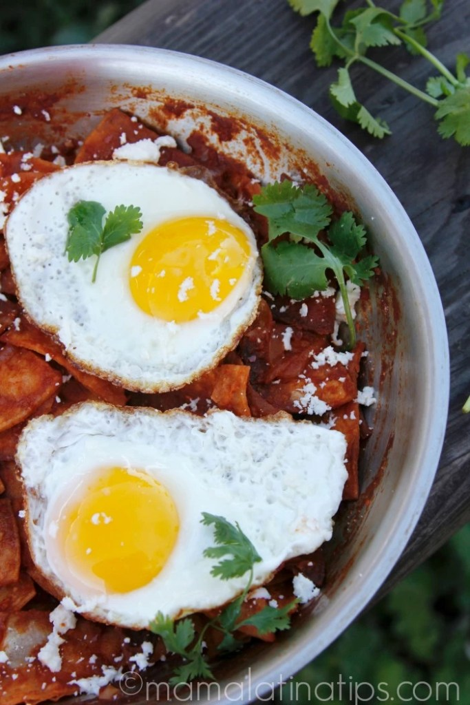 Chilaquiles and Eggs with Guajillo Sauce
