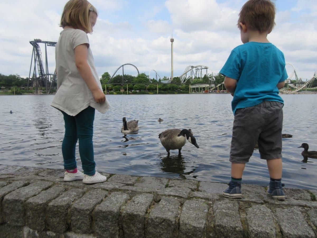 Freizeitparkglück: ein Tag im Heide Park Resort [Kinderversion] + Gewinnspiel