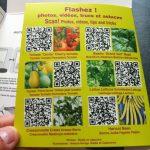 Des flash codes pour savoir comment planter vos graines!