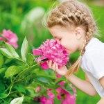 zdr-biljke