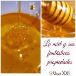 La miel y sus fantásticas propiedades