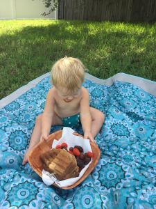 organic picnic foods and baby