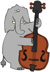 Elephant and Bass Fiddle