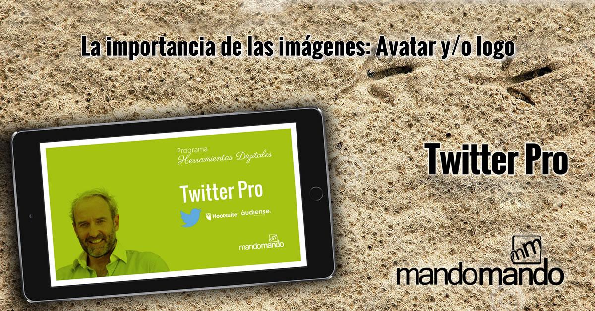 La importancia de las imágenes- Avatar y-o logo