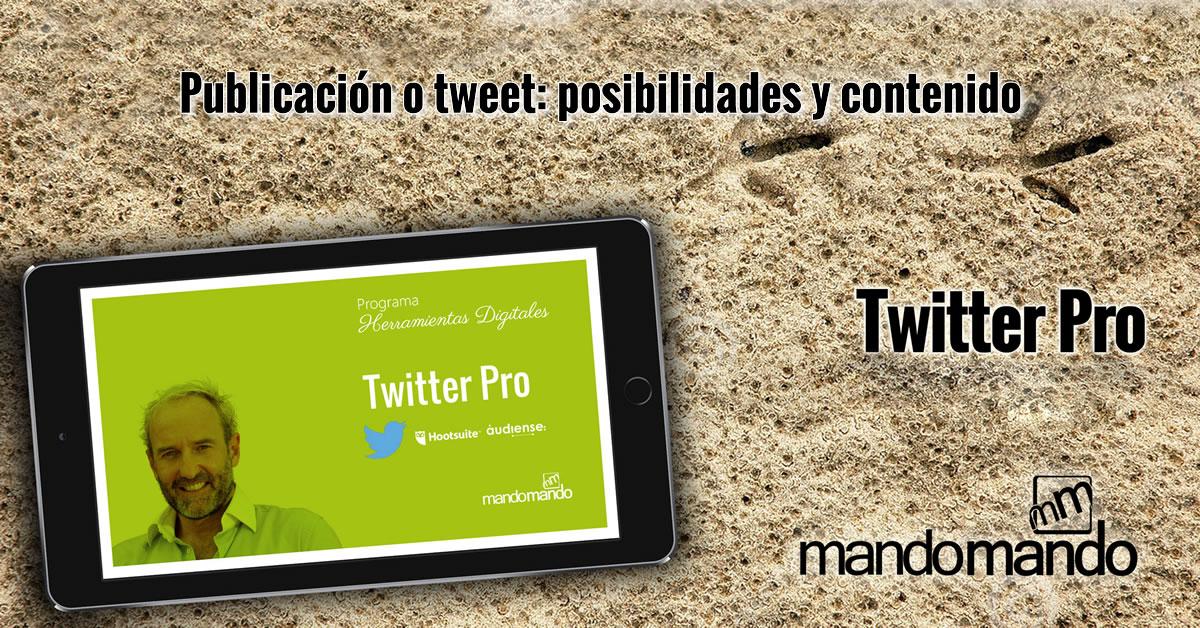 Publicación o tweet- posibilidades y contenido