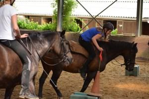 ponykamp 2015 (143)