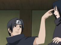 Stacchi sasuke