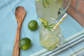lime-mocktails-paleo-sugar-free-recipe
