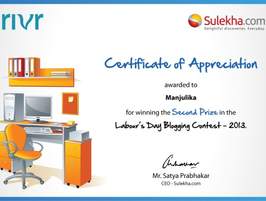 Blogging Day Certificate