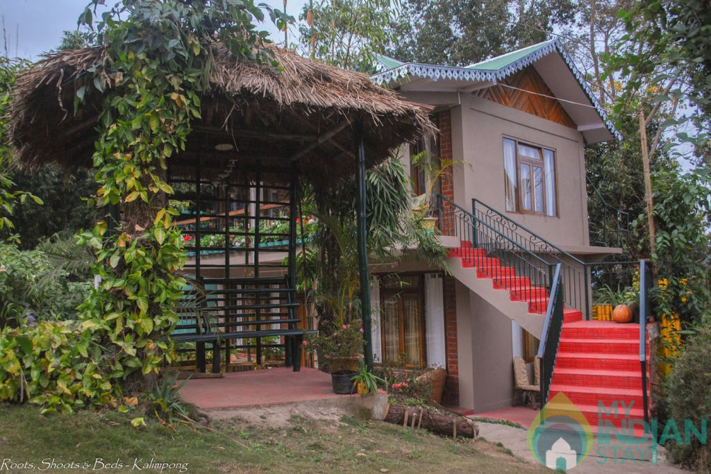 Roots, Shoots and Bed in Kalimpong