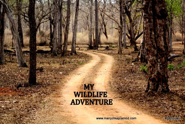 Wildlife adventure, Kabini, Karnataka