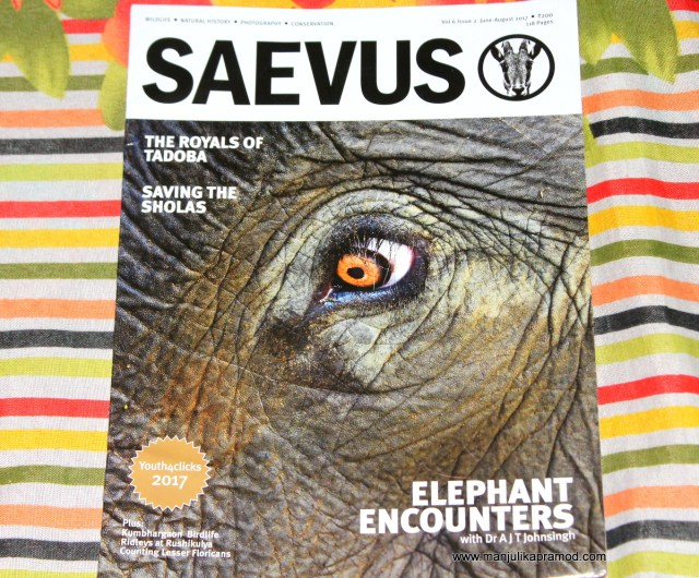SAEVUS, wildlife magazine, travel