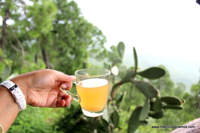A cup of tea staring towards the hills