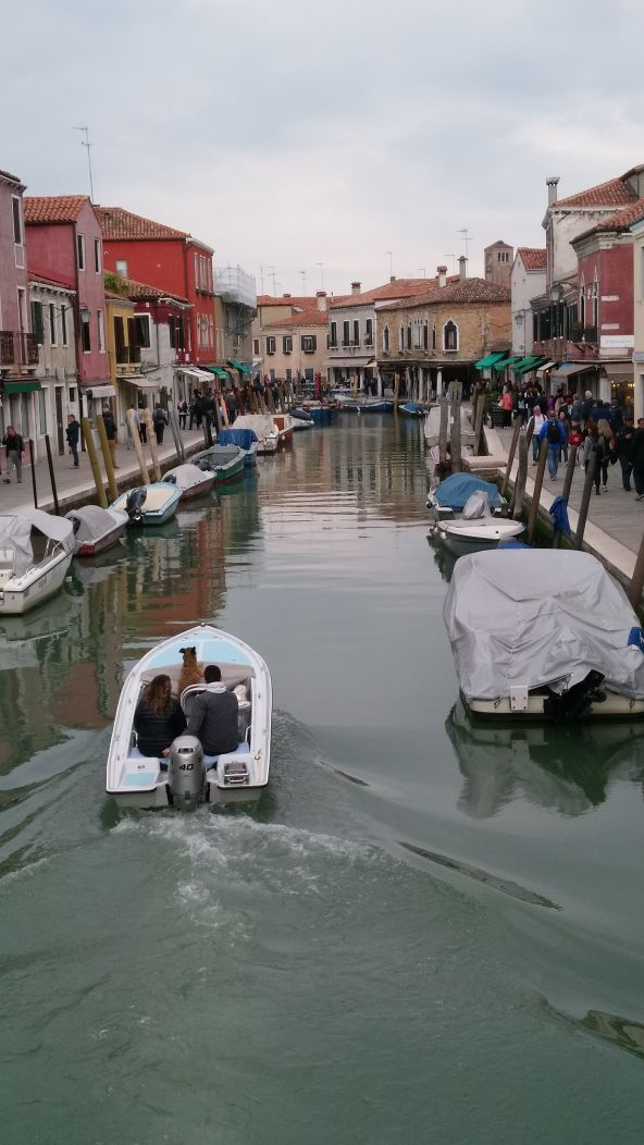 Venice Canal ride