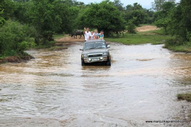 Welawaya, Safari fun