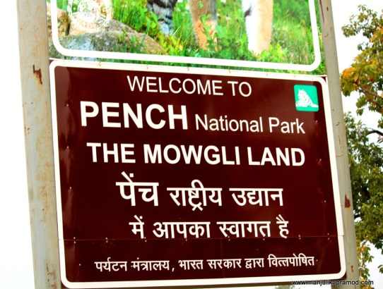 What is in store for you at PENCH NATIONAL PARK in India?