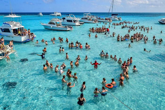 Ways to Spend an Awesome Port Day in Grand Cayman stingray city grand cayman islands