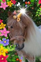 Unicornio fantasía