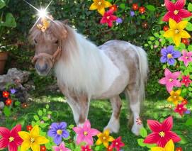 Unicornio real