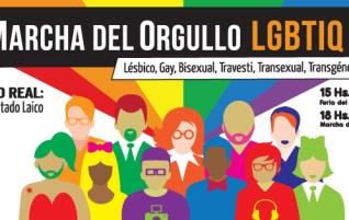 XXIII MARCHA DEL ORGULLO AÑO 2014