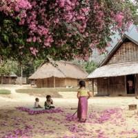 Laos-Luang Prabang Province > Ban Pha Yong