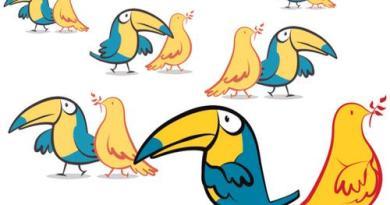 tucano e pombas