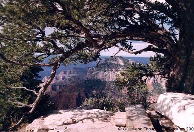 N. Rim Grand Canyon