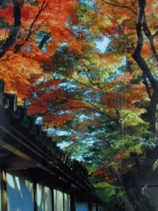 sky art in Itako