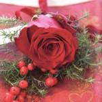 Kuvertpynt med røde roser