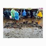 05 - boots cemetery - Wacken2015 - ph Mariela De Marchi Moyano