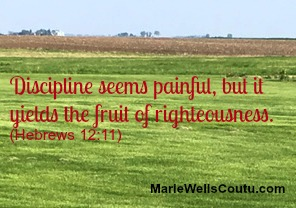 Discipline seems painful, but it yields the fruit of righteousness.