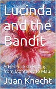 Lucinda and the Bandit cover