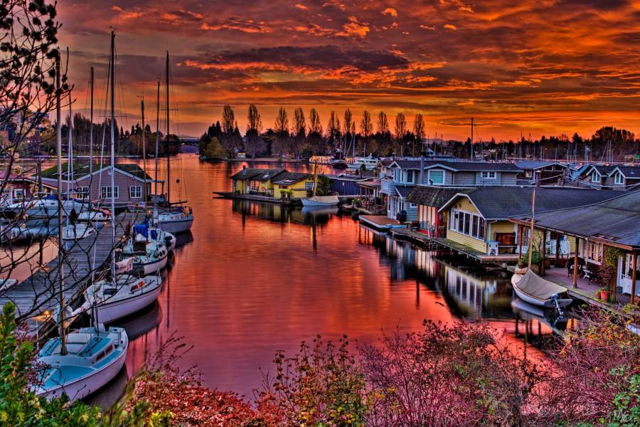 Mark Epstein Photo   Morning on Portage Bay