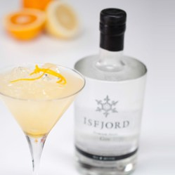 9-isfjord-gin-bees-knees