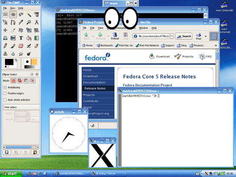 Using XMing to run X11 applications on a Windows XP machine