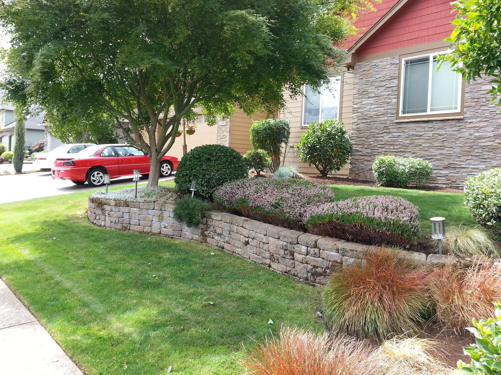 front yard maintenance